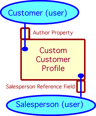 A simple model illustrating how salesperson is referenced by a field added to a custom customer profile.