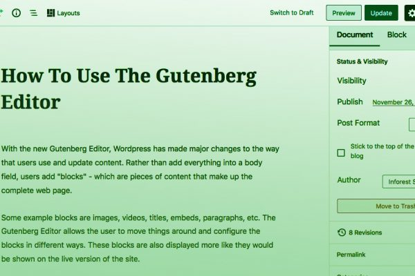 How To Use The Gutenberg Editor