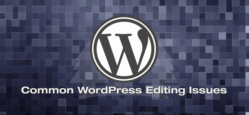 Common WordPress Editing Issues